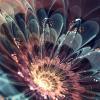 Аватар пользователя Shena