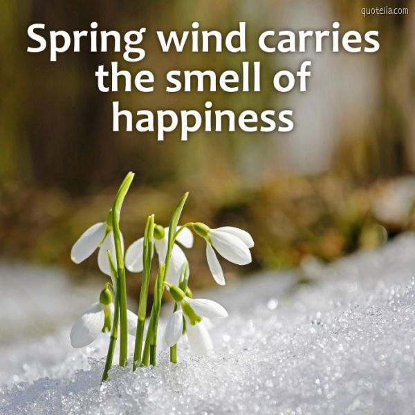 Spring wind carries the smell of happiness.