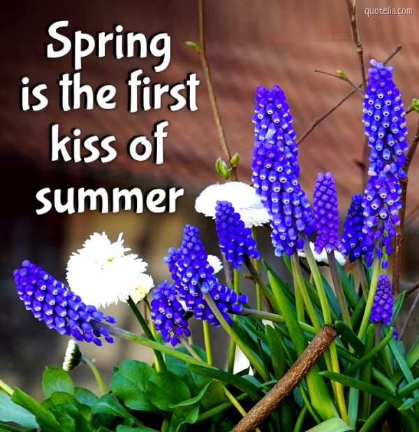 Spring is the first kiss of summer.