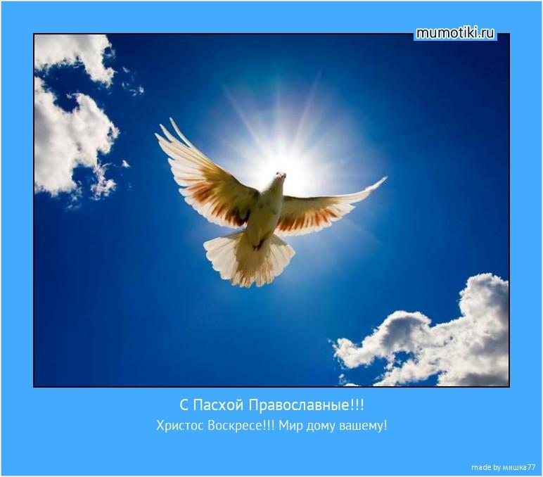 С Пасхой Православные!!! Христос Воскресе!!! Мир дому вашему! #мотиватор