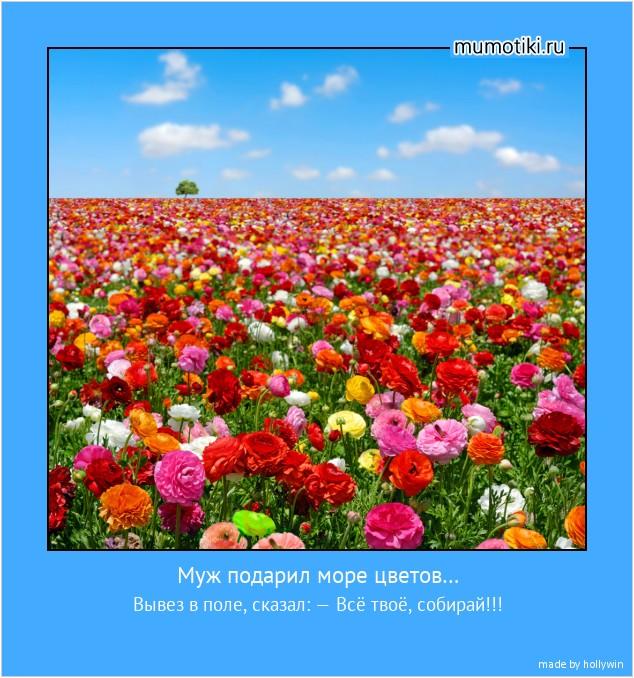 Муж подарил море цветов… Вывез в поле, сказал: — Всё твоё, собирай!!! #мотиватор
