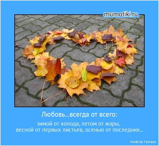 Любовь...всегда от всего: зимой от холода, летом от жары, весной от первых листьев, осенью от последних... #мотиватор