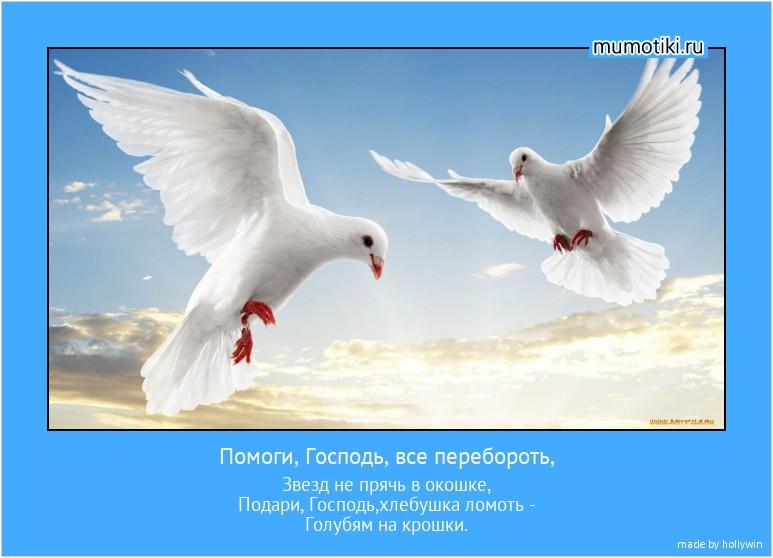 Помоги, Господь, все перебороть, Звезд не прячь в окошке, Подари, Господь,хлебушка ломоть - Голубям на крошки. #мотиватор