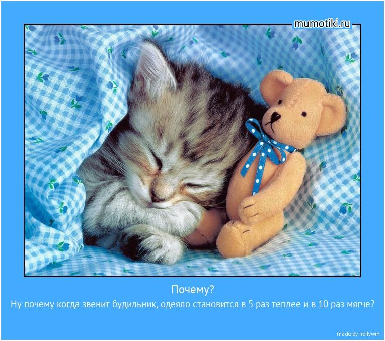 Почему? Ну почему когда звенит будильник, одеяло становится в 5 раз теплее и в 10 раз мягче? #мотиватор