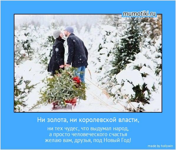 Ни золота, ни королевской власти, ни тех чудес, что выдумал народ, а просто человеческого счастья желаю вам, друзья, под Новый Год! #мотиватор