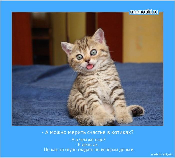 - А можно мерить счастье в котиках? - А в чем же еще? - В деньгах. - Но как-то глупо гладить по вечерам деньги. #мотиватор