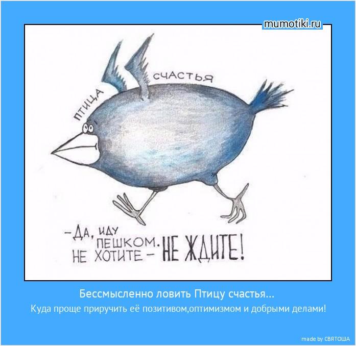 Бессмысленно ловить Птицу счастья… Куда проще приручить её позитивом,оптимизмом и добрыми делами! #мотиватор