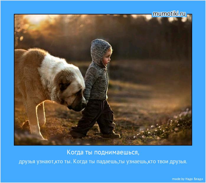 Когда ты поднимаешься, друзья узнают,кто ты. Когда ты падаешь,ты узнаешь,кто твои друзья. #мотиватор