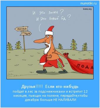 Друзья!!!!! Если кто-нибудь пойдет в лес за подснежниками и встретит 12 месяцев, пьющих на поляне, передайте,чтобы декабрю больше НЕ НАЛИВАЛИ #мотиватор
