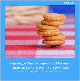 Однажды Ученик спросил у Мастера: - Долго ли ждать перемен к лучшему? - Если ждать, то долго! - ответил Мастер #мотиватор