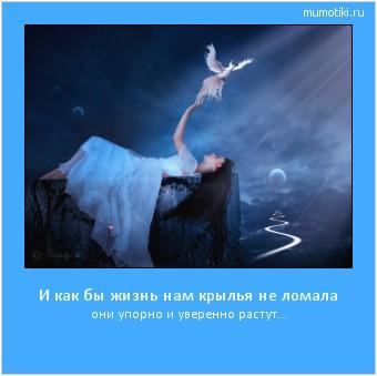 И как бы жизнь нам крылья не ломала они упорно и уверенно растут... #мотиватор