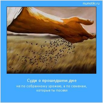 Суди о прошедшем дне не по собранному урожаю, а по семенам, которые ты посеял #мотиватор