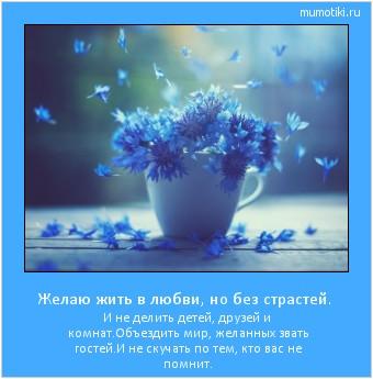 Желаю жить в любви, но без страстей.  И не делить детей, друзей и комнат. Объездить мир, желанных звать гостей. И не скучать по тем, кто вас не помнит.  #мотиватор
