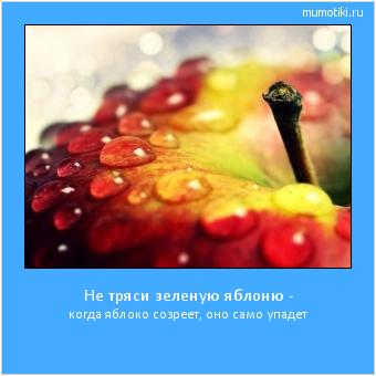 Не тряси зеленую яблоню - когда яблоко созреет, оно само упадет #мотиватор