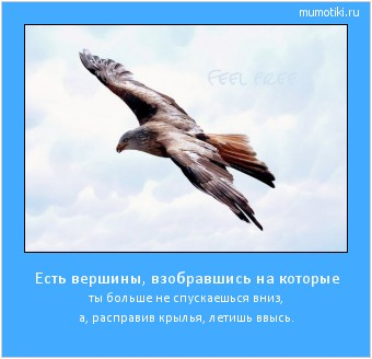 Есть вершины, взобравшись на которые ты больше не спускаешься вниз, а, расправив крылья, летишь ввысь. #мотиватор