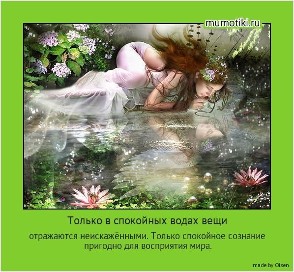 Только в спокойных водах вещи отражаются неискажёнными. Только спокойное сознание пригодно для восприятия мира. #мотиватор