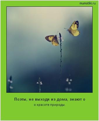 Поэты, невыходя издома, знают о окрасоте природы. #мотиватор