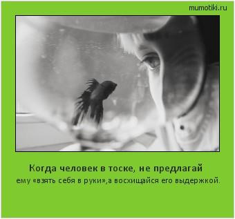 Когда человек в тоске, не предлагай ему «взять себя в руки»,а восхищайся его выдержкой. #мотиватор