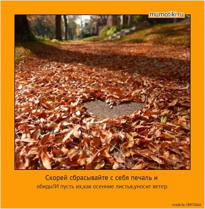 Скорей сбрасывайте с себя печаль и обиды!И пусть их,как осенние листья,уносит ветер. #мотиватор