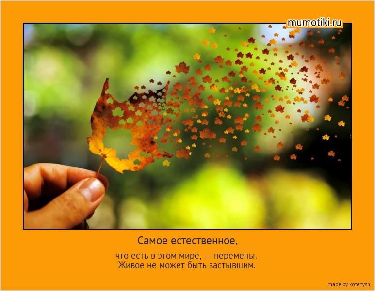 Самое естественное, что есть в этом мире, — перемены. Живое не может быть застывшим. #мотиватор
