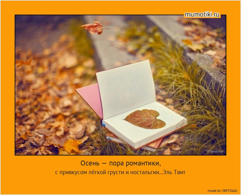 Осень — пора романтики, с привкусом лёгкой грусти и ностальгии. Эль Твит
