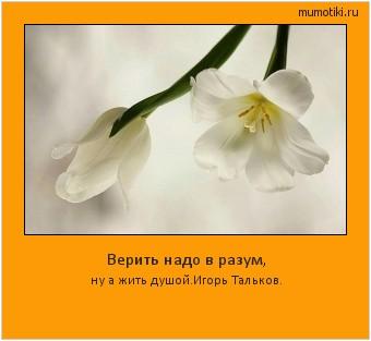 Верить надо в разум, ну а жить душой.Игорь Тальков. #мотиватор