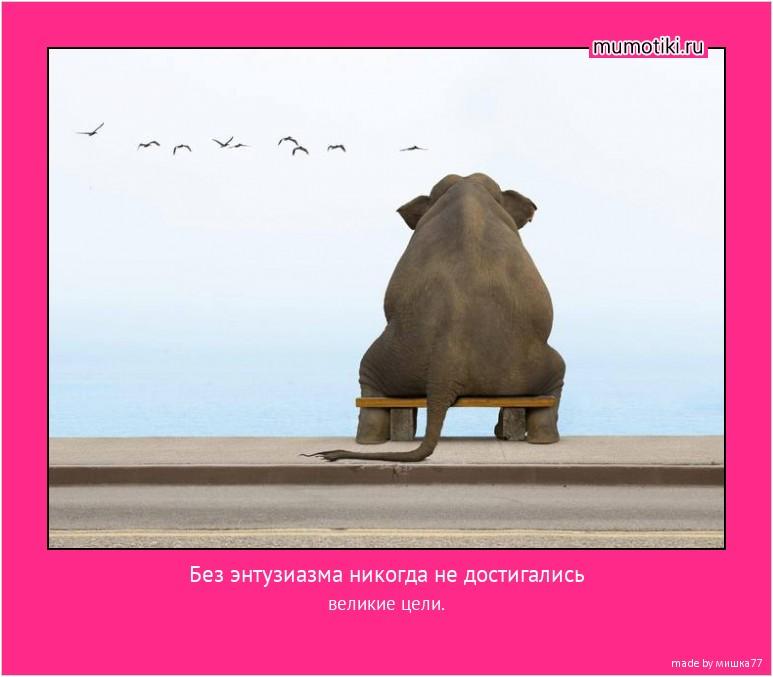 Без энтузиазма никогда не достигались великие цели. #мотиватор