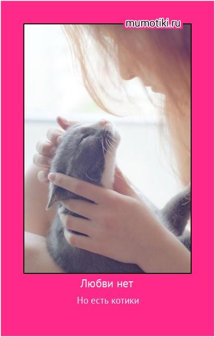 Любви нет Но есть котики #мотиватор