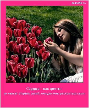 Сердца - как цветы: их нельзя открыть силой, они должны раскрыться сами. #мотиватор