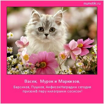 Васек, Мурок и Маркизов, Барсиков, Пушков, Анфисок Наградим сегодня призом В пару килограмм сосисок! #мотиватор