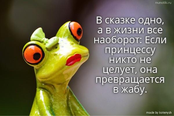 В сказке одно, а в жизни все наоборот: Если принцессу никто не целует, она превращается в жабу. #цитата