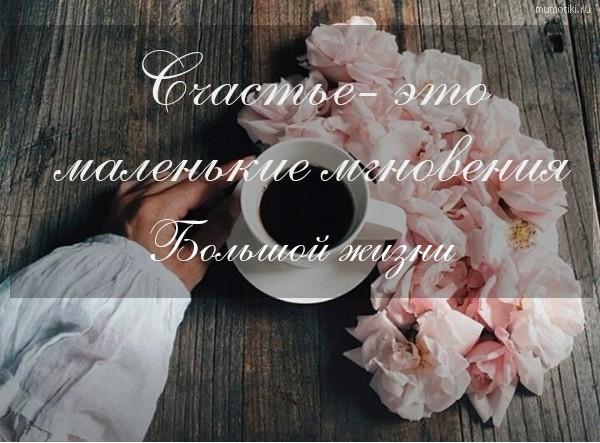 Счастье- это маленькие мгновения Большой жизни #цитата