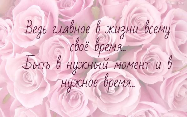 Ведь главное в жизни всему своё время... Быть в нужный момент и в нужное время... #цитата
