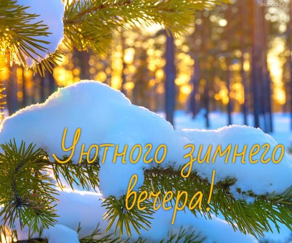 Уютного зимнего вечера! #цитата