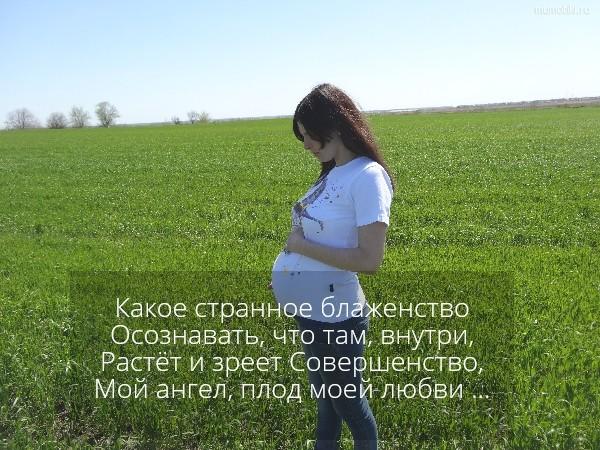 Какое странное блаженство Осознавать, что там, внутри, Растёт и зреет Совершенство, Мой ангел, плод моей любви ... #цитата
