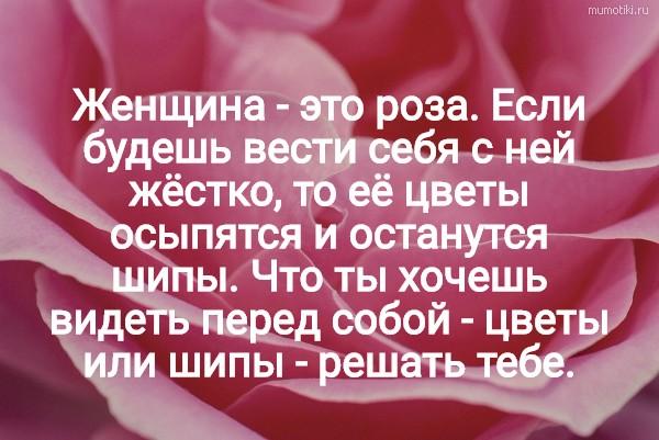 Женщина - это роза. Если будешь вести себя с ней жёстко, то её цветы осыпятся и останутся шипы. Что ты хочешь видеть перед собой - цветы или шипы - решать тебе. #цитата