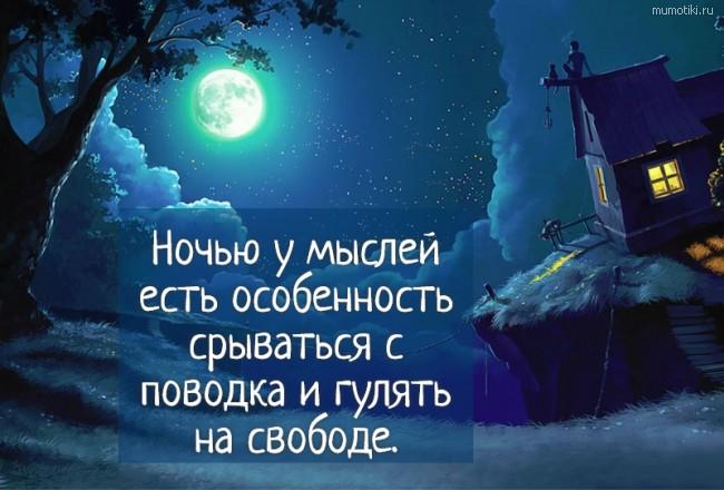 Ночью у мыслей есть особенность срываться с поводка и гулять на свободе. #цитата