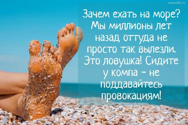 Зачем ехать на море? Мы миллионы лет назад оттуда не просто так вылезли. Это ловушка! Сидите у компа - не поддавайтесь провокациям! #цитата
