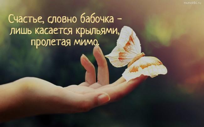Счастье, словно бабочка - лишь касается крыльями, пролетая мимо. #цитата