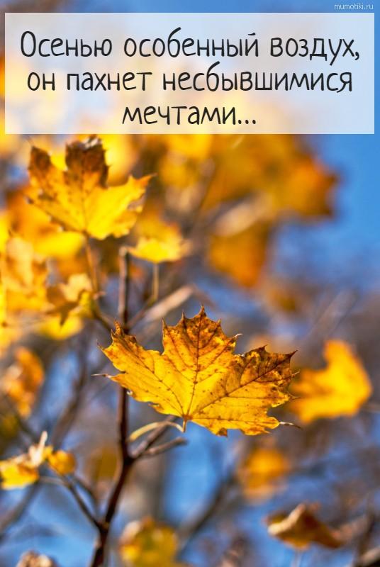 Осенью особенный воздух, он пахнет несбывшимися мечтами…