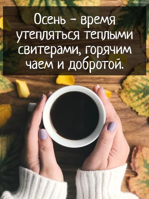Осень - время утепляться теплыми свитерами, горячим чаем и добротой. #цитата