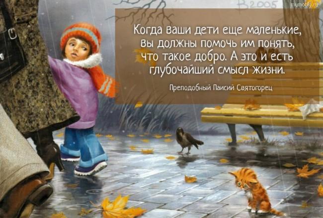 Когда ваши дети еще маленькие, вы должны помочь им понять, что такое добро. А это и есть глубочайший смысл жизни.. Преподобный Паисий Святогорец #цитата