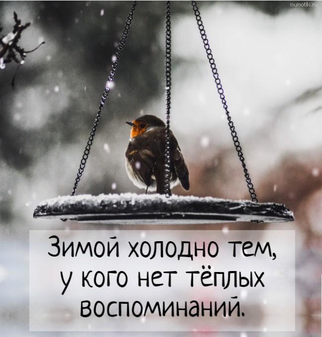 Зимой холодно тем, у кого нет тёплых воспоминаний. #цитата