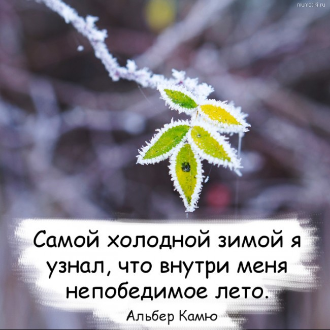Самой холодной зимой я узнал, что внутри меня непобедимое лето. Альбер Камю #цитата