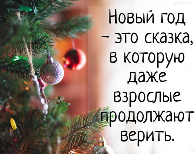 Новый год - это сказка, в которую даже взрослые продолжают верить. #цитата