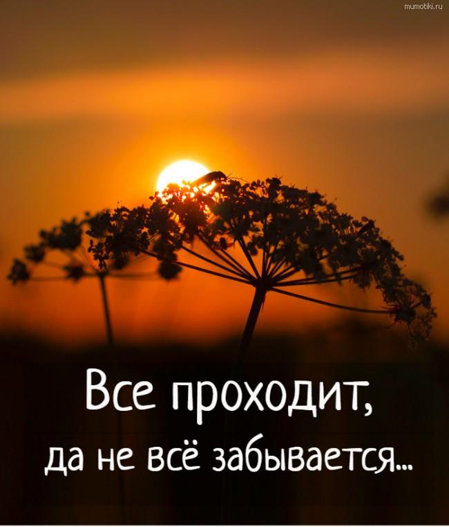 Все проходит, да не всё забывается... #цитата