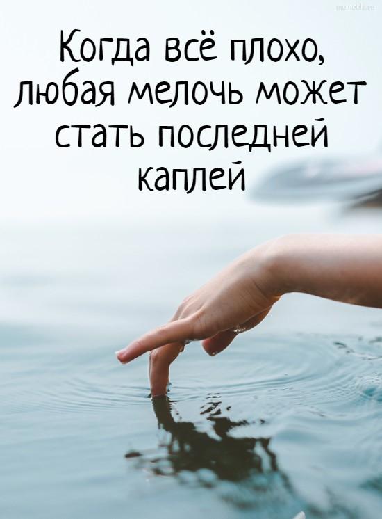 Когда всё плохо, любая мелочь может стать последней каплей #цитата