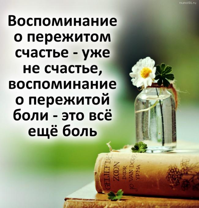 Воспоминание о пережитом счастье - уже не счастье, воспоминание о пережитой боли - это всё ещё боль #цитата