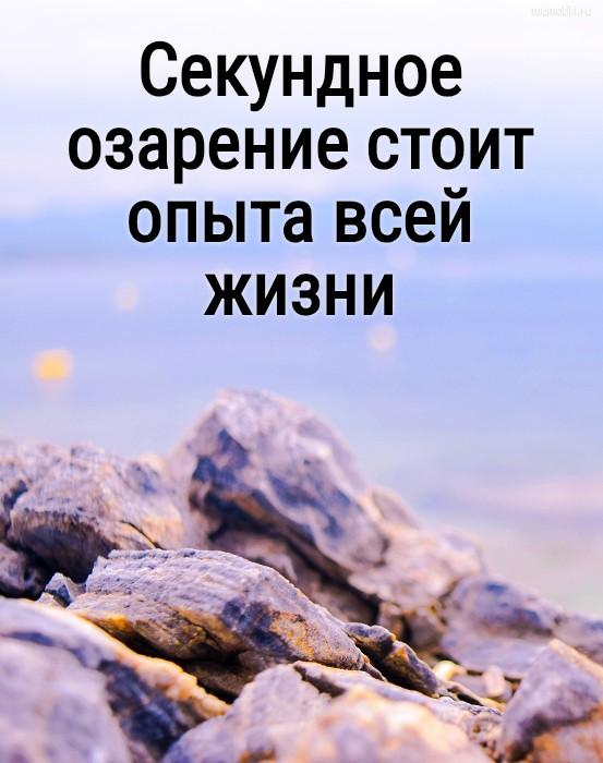 Секундное озарение стоит опыта всей жизни #цитата