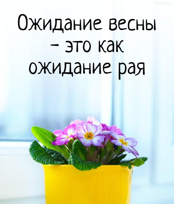 Ожидание весны - это как ожидание рая #цитата